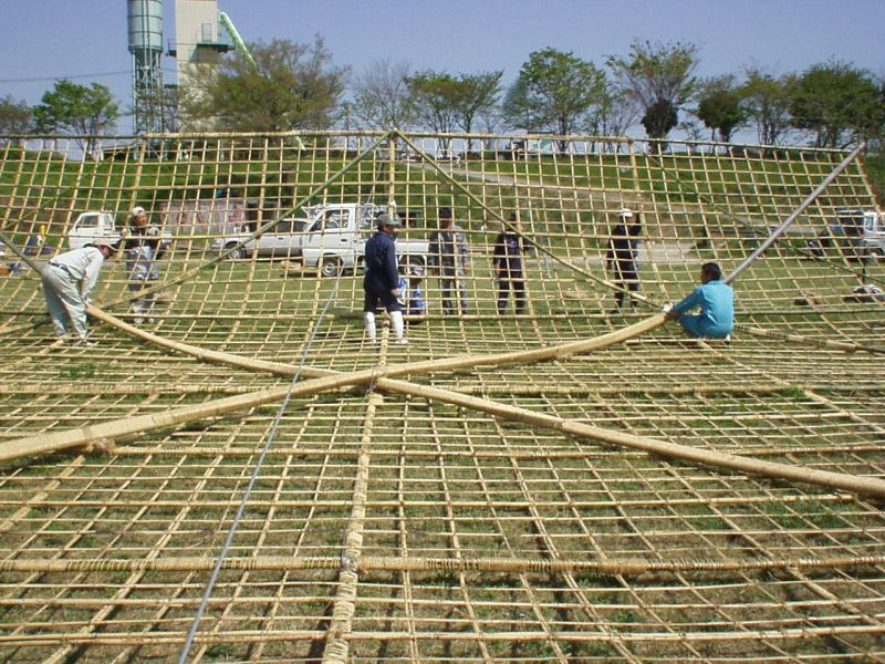 the giant kites of sagami from japan english